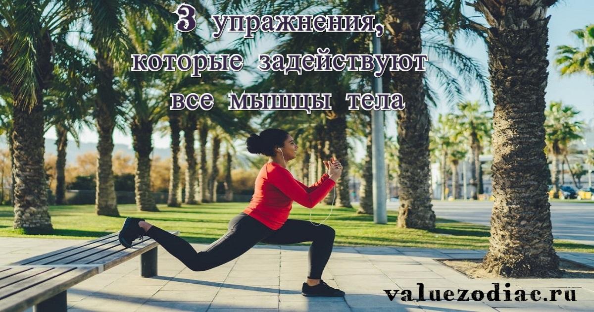 3 упражнения, которые задействуют все мышцы тела